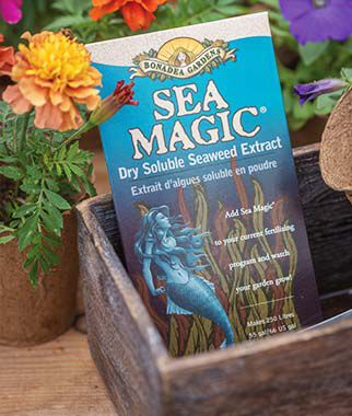 Sea Magic Organic Growth Activator, , large
